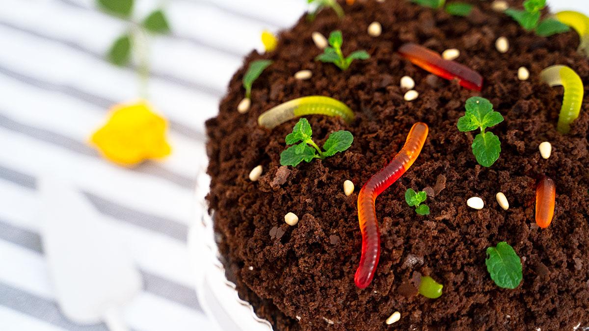 Krtkova torta s brownie