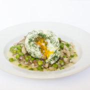 Kôprové vajíčko s hríbovou omáčkou